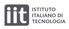 Logo of Istituto Italiano di Tecnologia